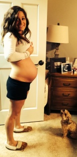 27 Weeks (March 28, 2014). Well, well, well. I'm definitely getting pretty darn big. It's crazy... I don't recognize my own body. But, I'm feeling great (pregnancy wise) and working to fight off this ick. Also, how cute is Toby? I swear I didn't even call him. He just followed us into the room and sat down to watch me. So cute.