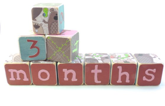 Month blocks from Etsy...