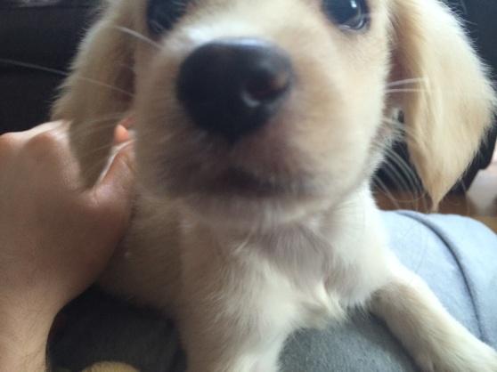 Cute face!