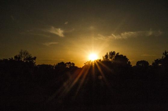 Gorg sunset.