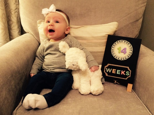Fourteen Weeks Old